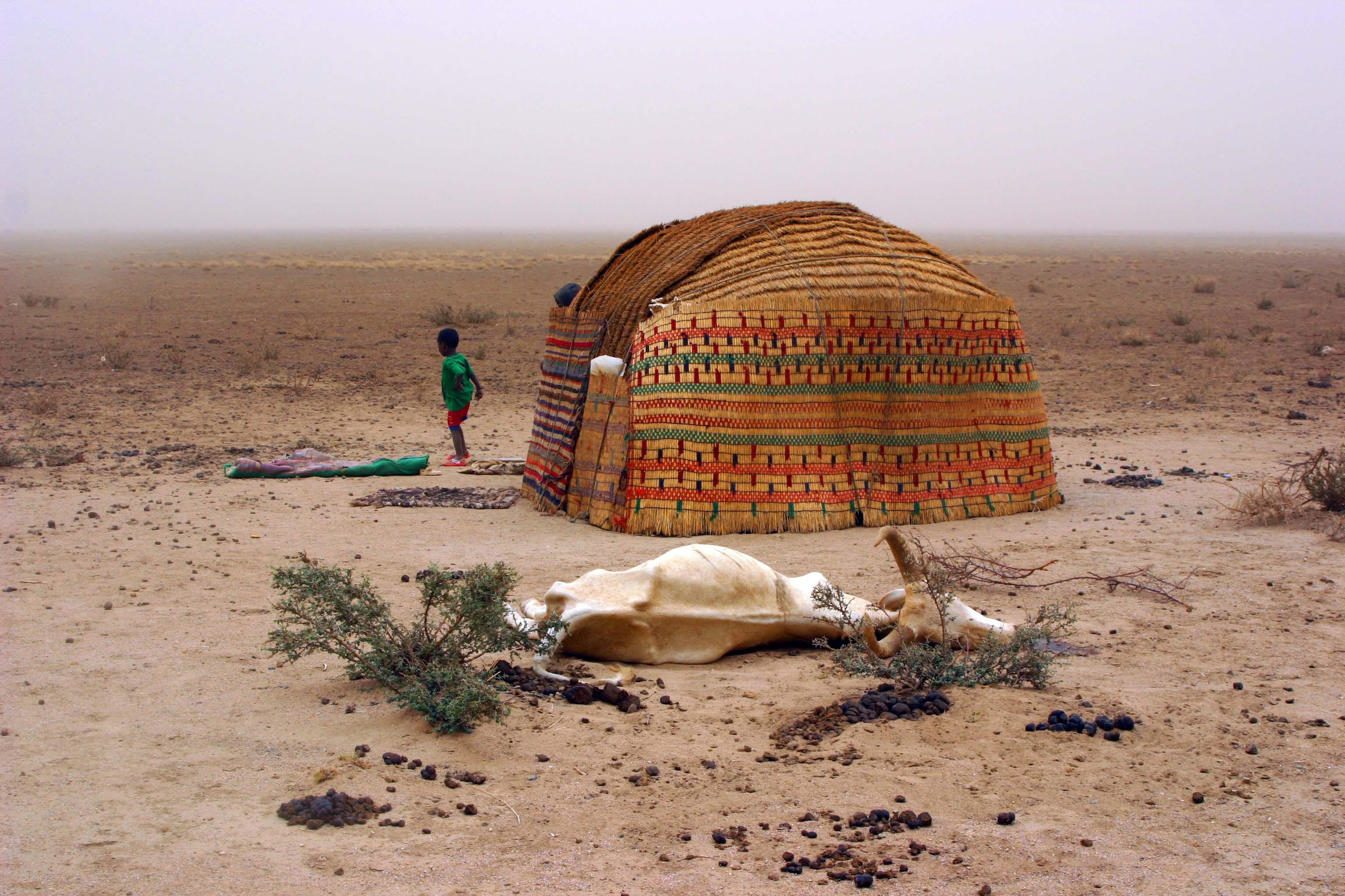 Ogaden, Ethiopia - DARA